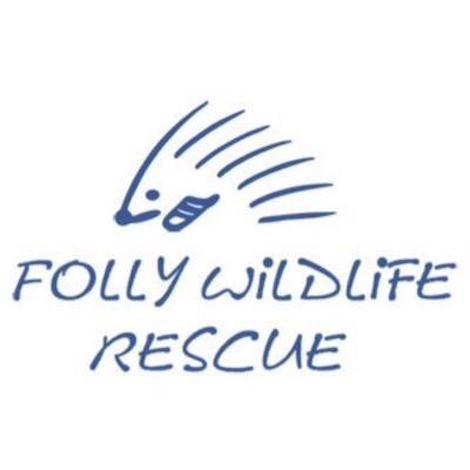 Ambulance for Folly Wildlife Rescue